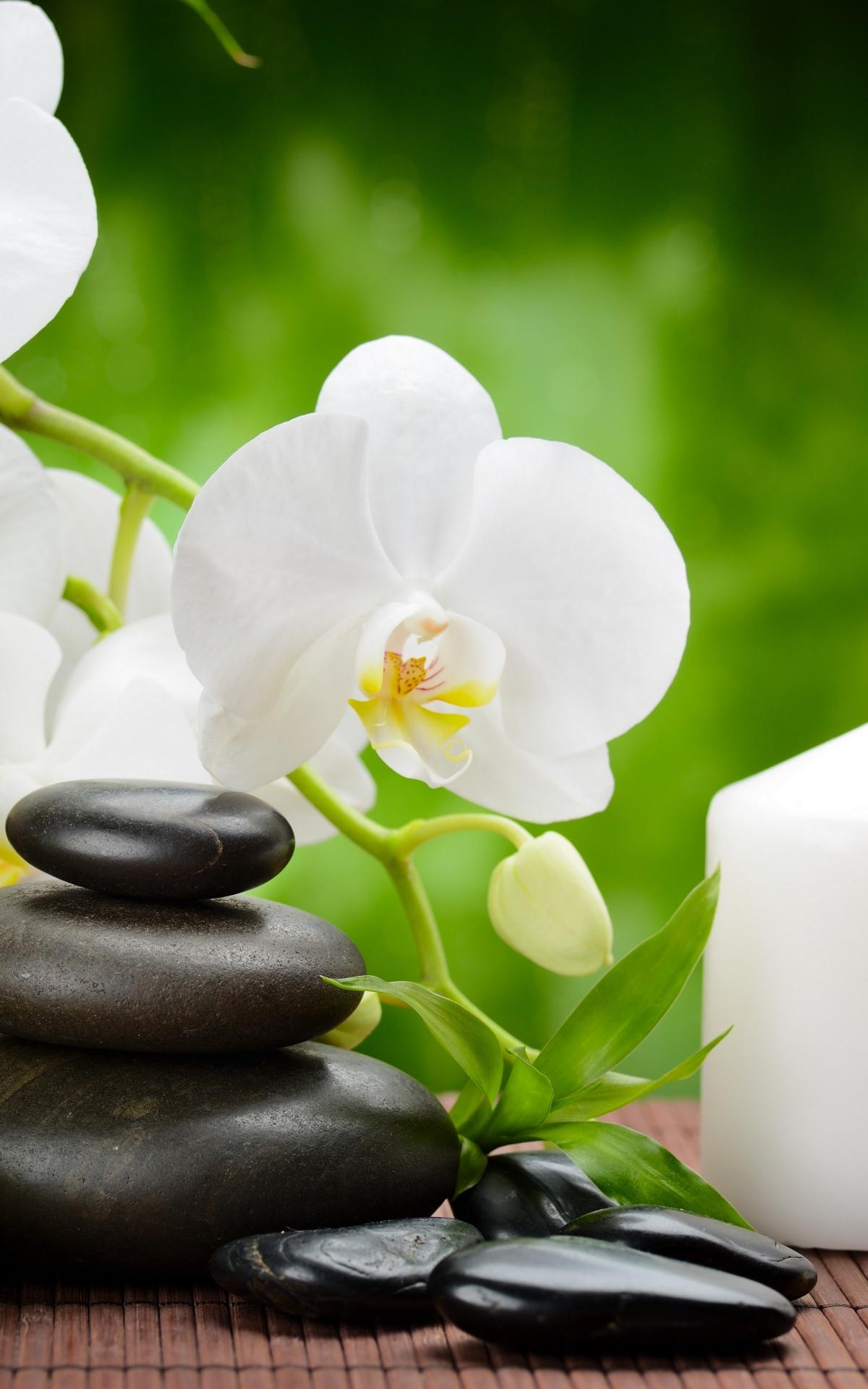 фотографии галина красивые картинки дзен закрепить цвет