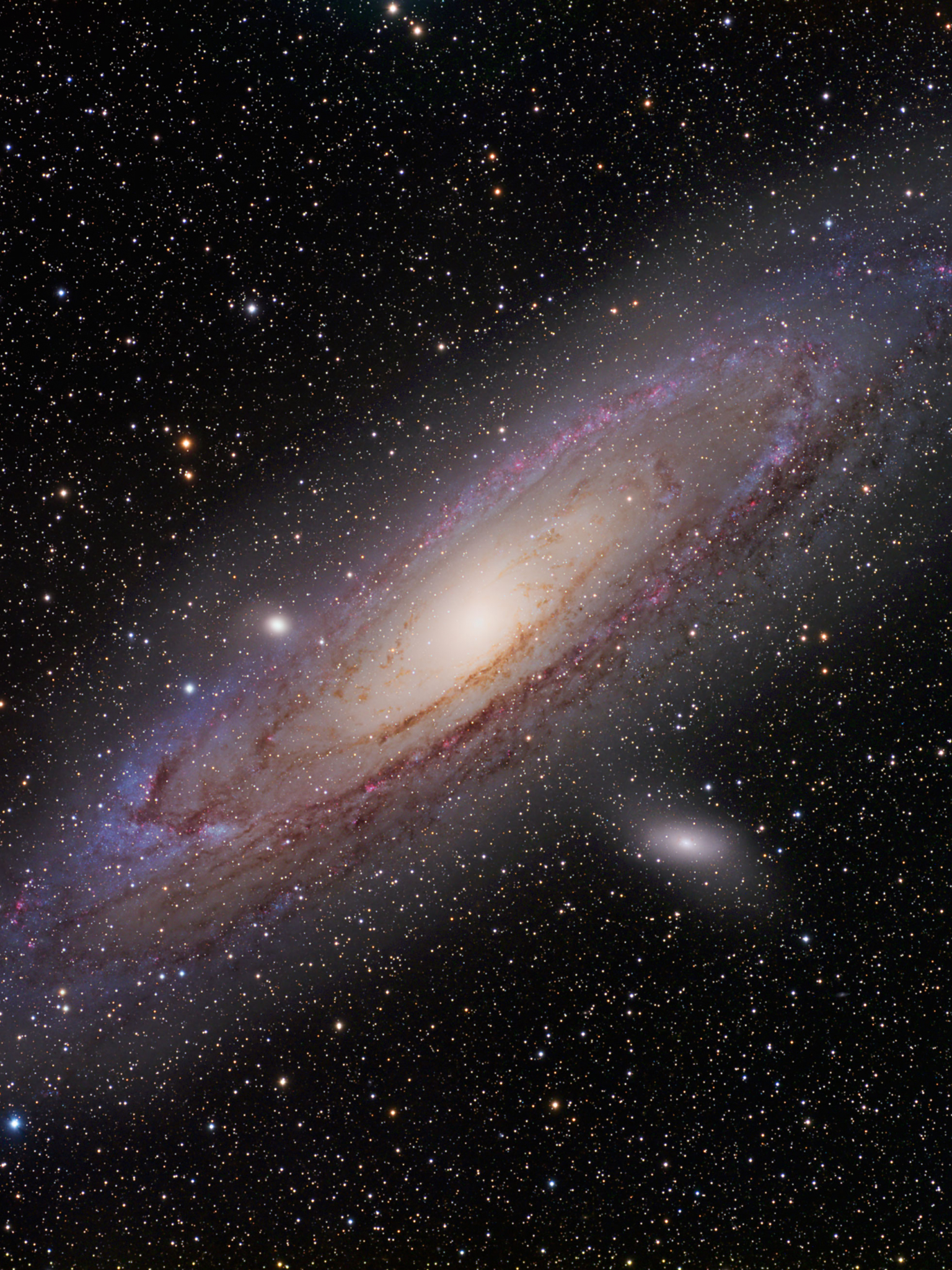 Free Download Hubble Ultra Deep Field Widescreen 13 1080p Wallpaperizcom 3960x2611 For Your Desktop Mobile Tablet Explore 49 Hubble Wallpaper 1080p Hd Nasa Wallpapers Best Space Wallpapers Hd Astronomy Wallpapers Hd