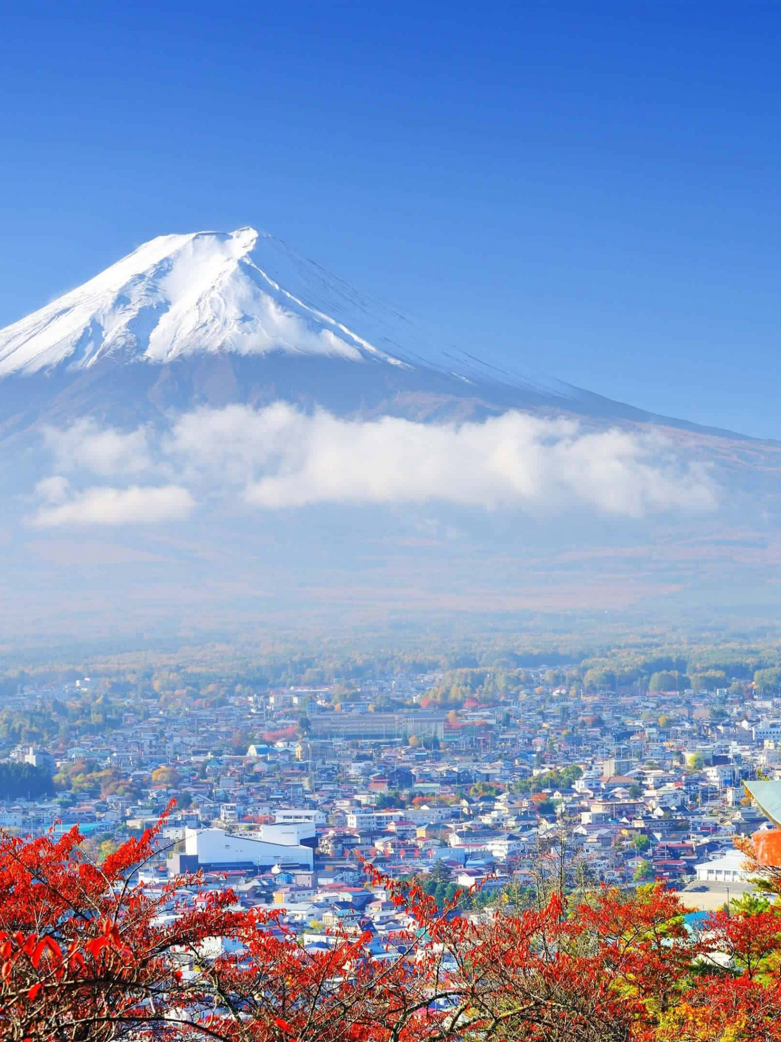 Free Download View Of Mount Fuji From A Red Pagoda Tokyo Uhd