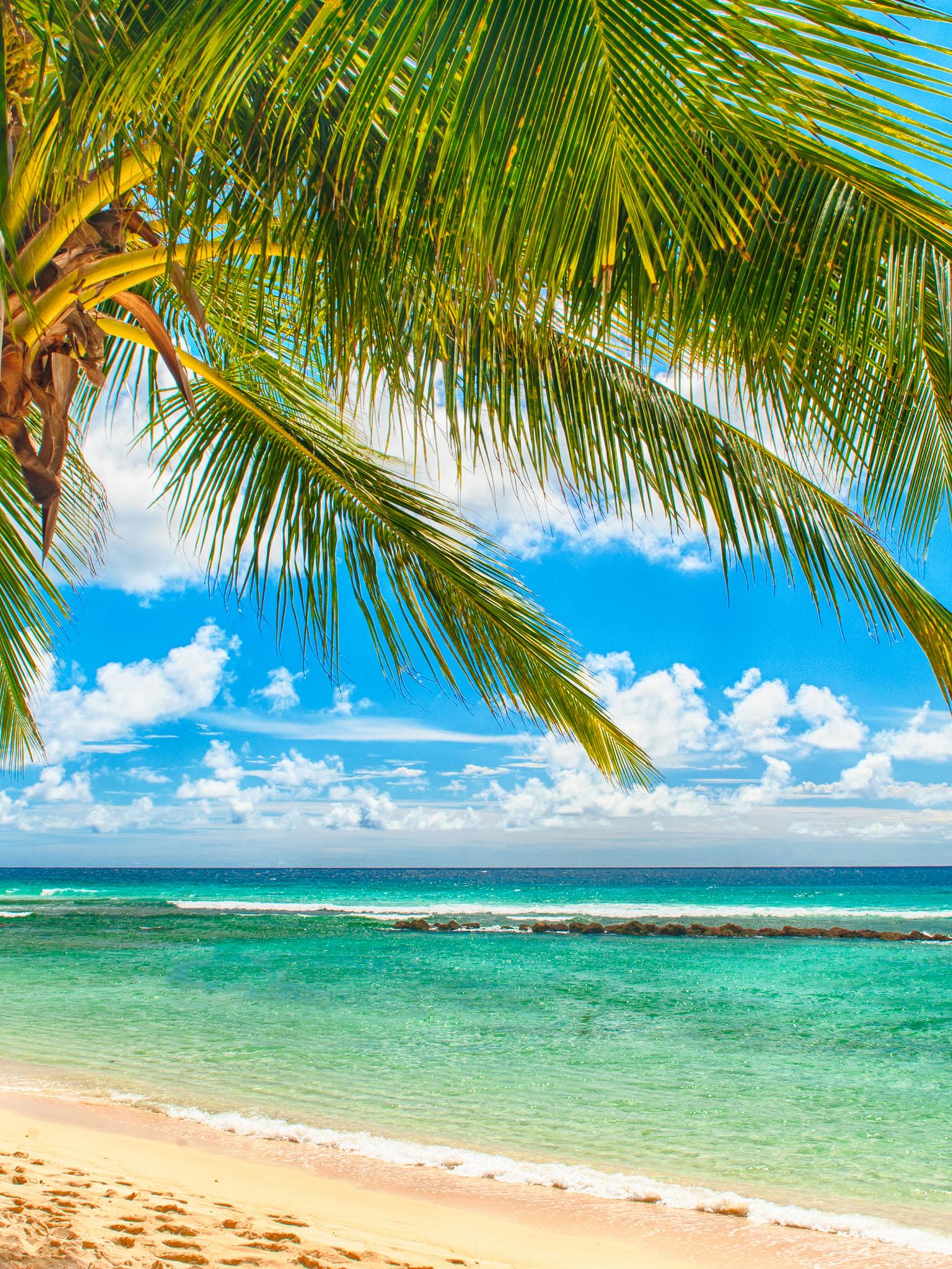 Море лето фото для экрана телефона