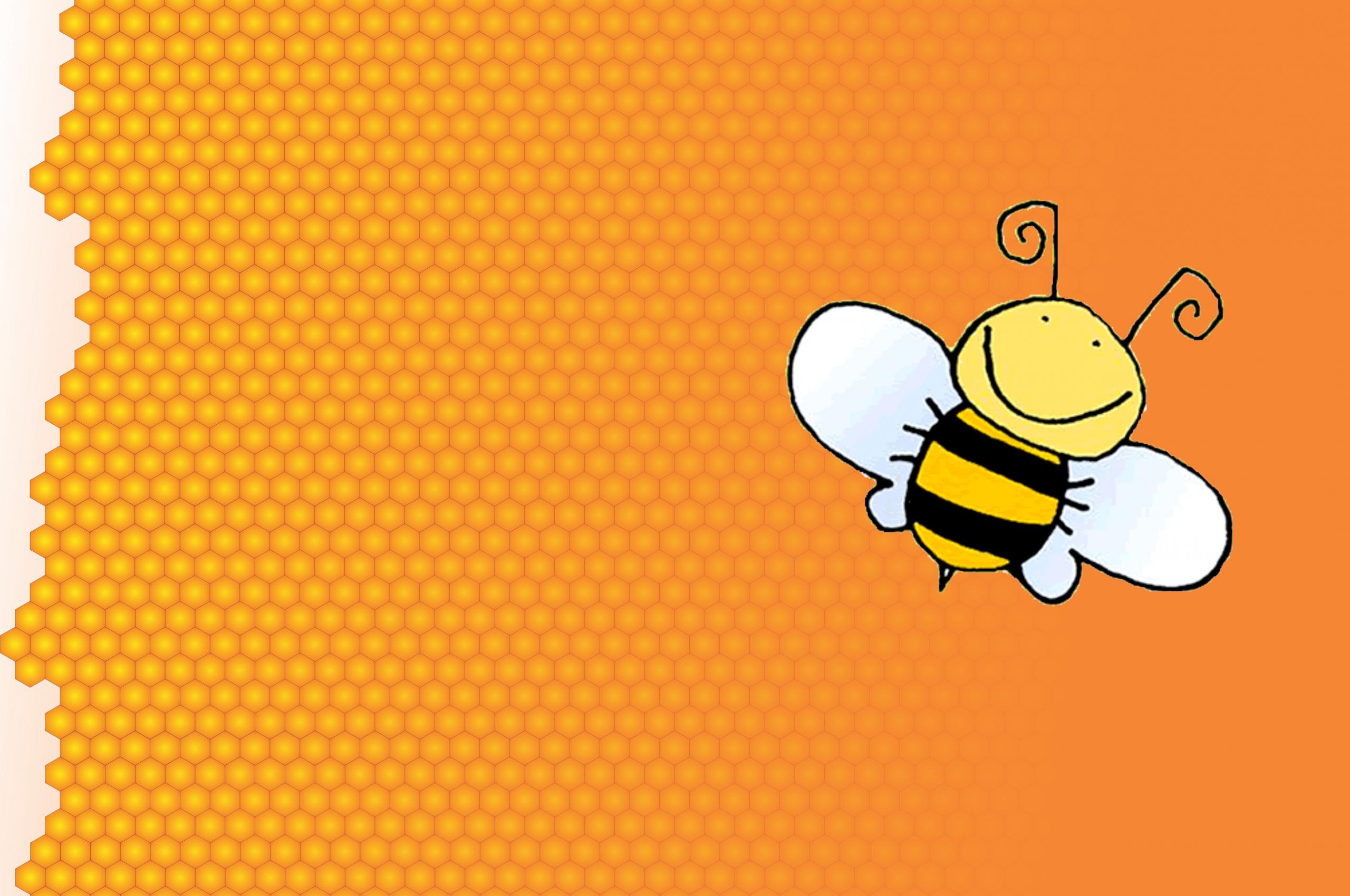 фото обои и картинки пчелка матчи всегда собирают