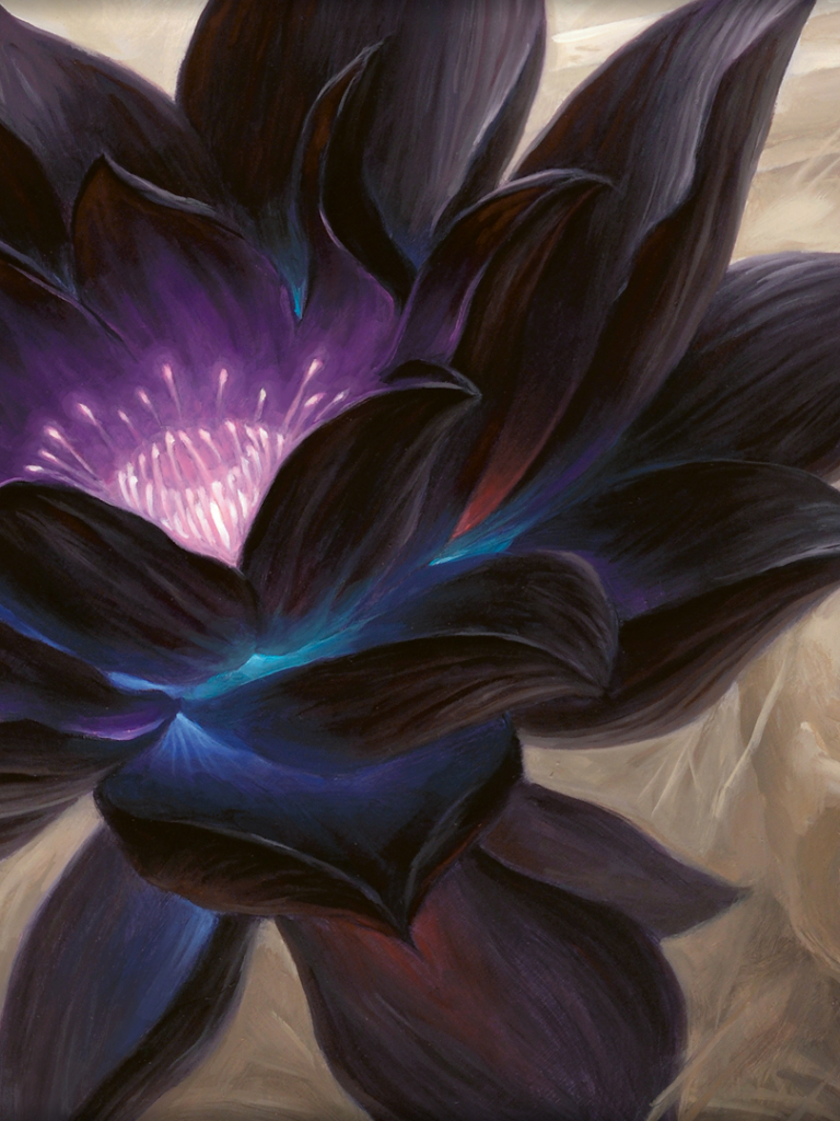 Free Download Wallpaper Of The Day Black Lotus Daily Mtg Magic The Gathering 1920x1080 For Your Desktop Mobile Tablet Explore 44 Magic The Gathering Iphone Wallpaper Mtg Phone Wallpaper