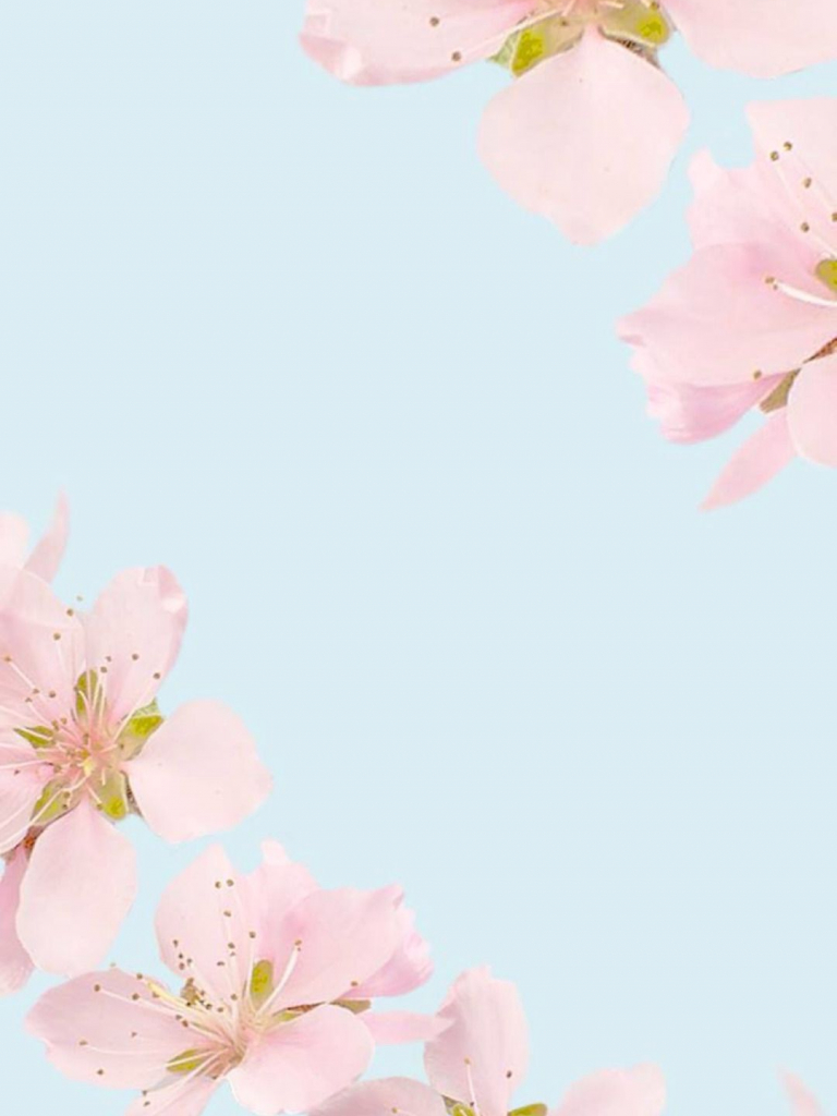 Free Download Tumblr Pretty Backgrounds Floral Wallpaper Iphone