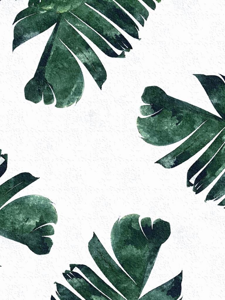 free 50 tropical leaves desktop wallpapers