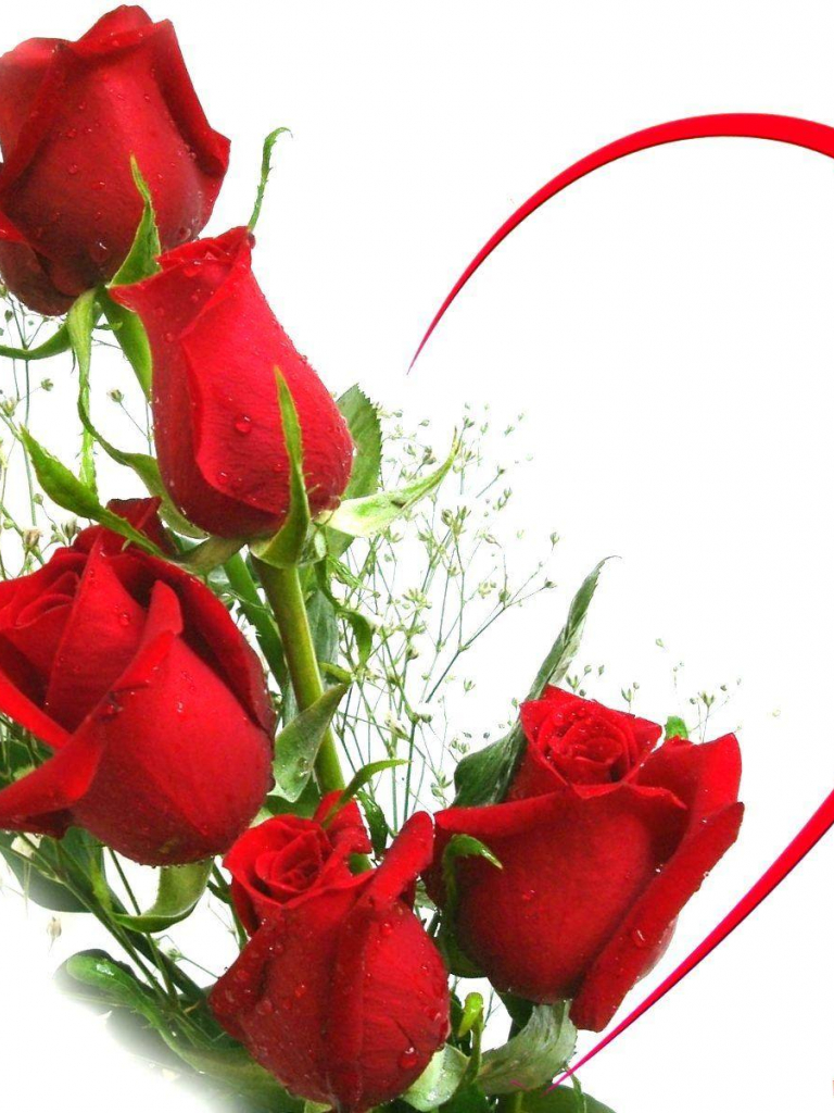 Free Download Red Rose Love Wallpapers 1600x1200 For Your