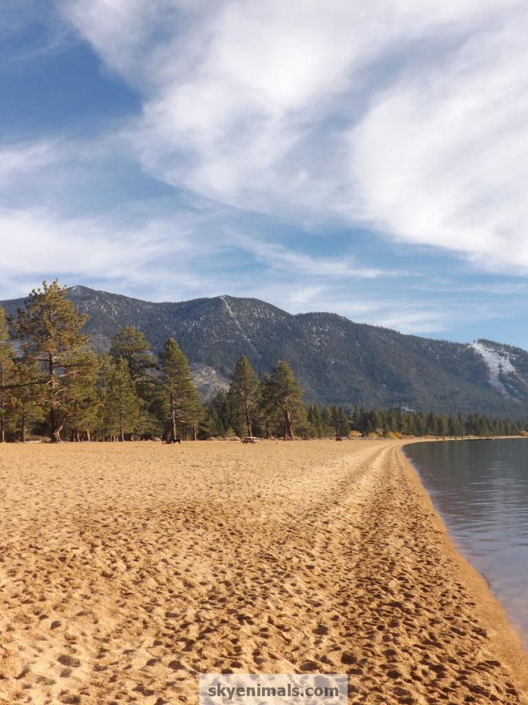 Lake Tahoe Winter Wallpaper Desktop Background: Lake Tahoe Free Wallpaper