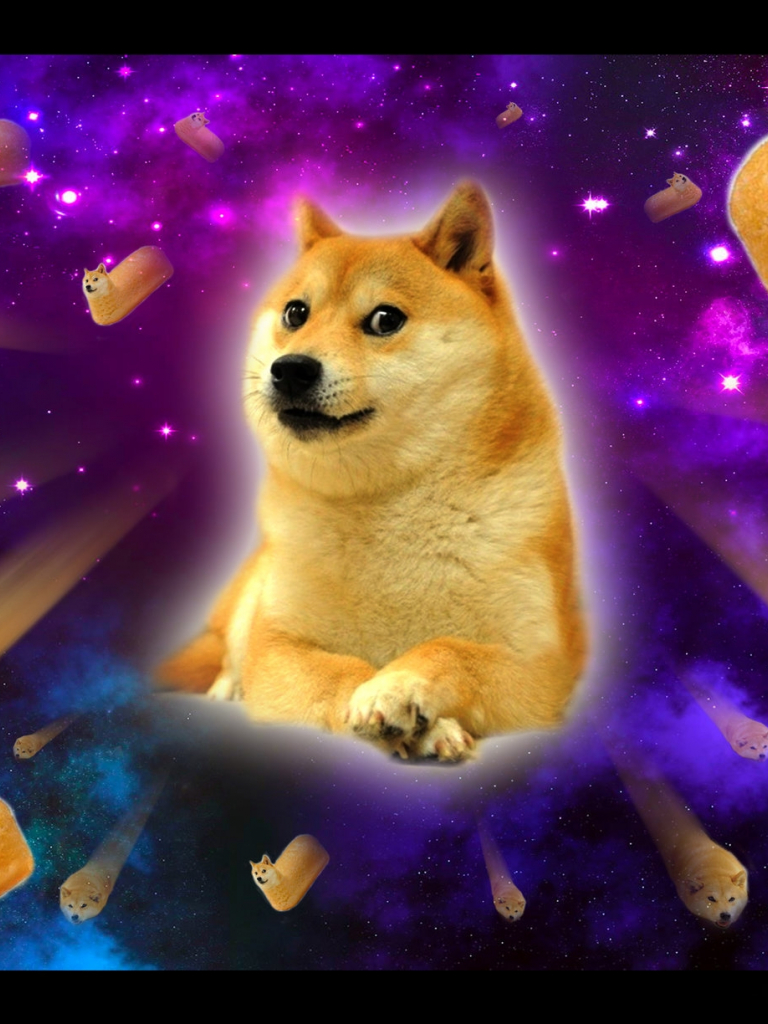Free download Twinkie Doge in Space Doge Wallpaper ...